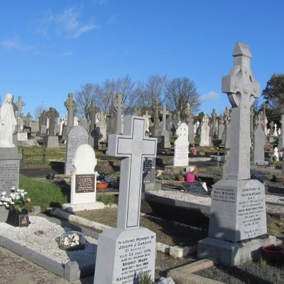 St. Mary's Cemetery Enniscorthy 2014-02-11 11.29.27 (7)