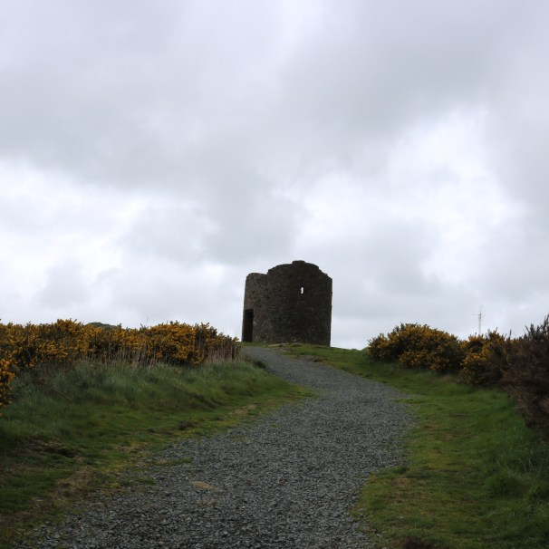 Vinegar Hill, Enniscorthy 2017-03-28 (19)