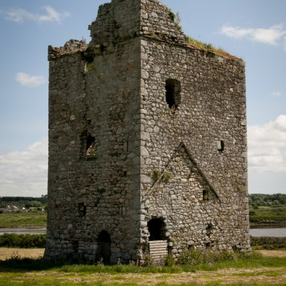 Clonmines Before Conservation 006