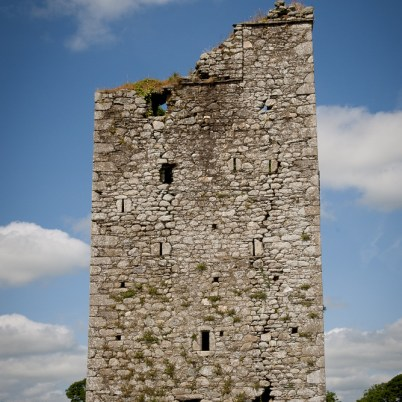 Clonmines Before Conservation 022