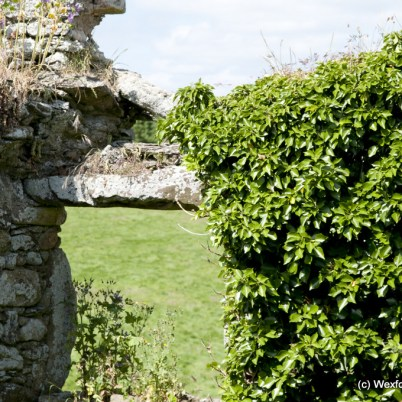 Clonmines Before Conservation 052