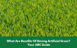 Benefits Of Having Artificial Grass