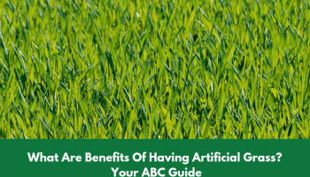 Benefits Of Having Artificial Grass