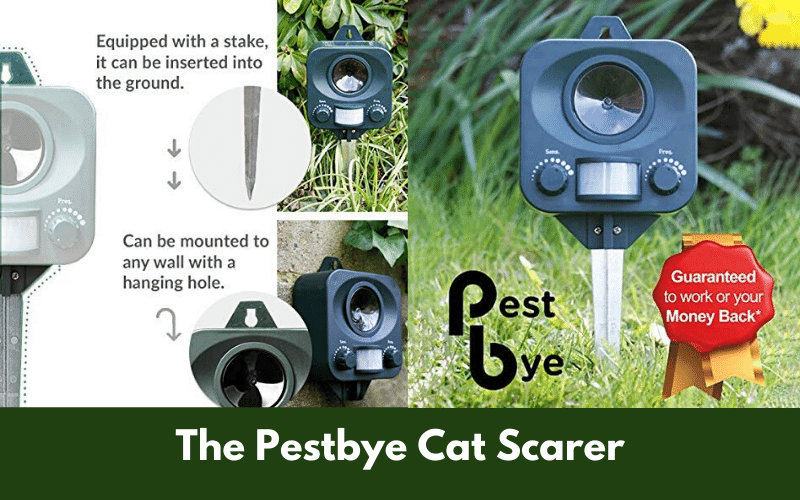 The Pestbye Cat Scarer