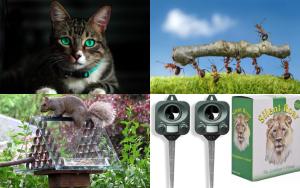 Cat and Pest Deterrents