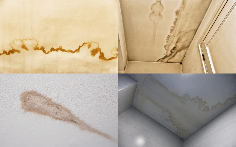 Water Stains Ceilings and Walls - Examples