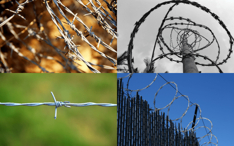 Barbwire Fence - Examples
