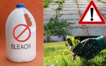 Bleach Weed killer - Example