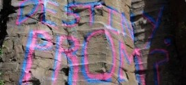 Teen Who Spray-Painted Prom Invite on Cliff Sought