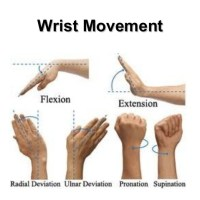 Wrist Input Is Just Starting