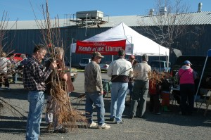 Winters Friends of the Library annual Fruit Tree Sale