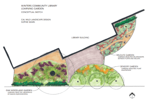 Plans for Learning Garden at the Winters Community Library