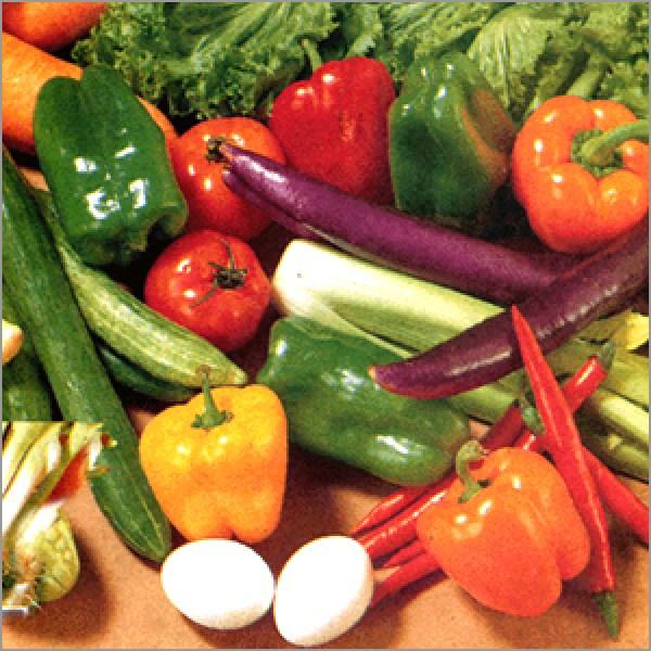 fresh_vegetables