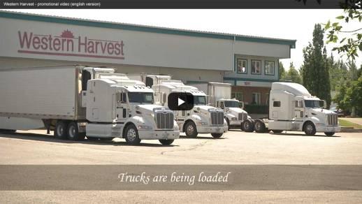 western_harvest_06_video_EN_1