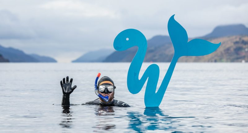 Whale-like-fish logo at Loch Ness