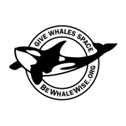 This image has an empty alt attribute; its file name is bewhalewise-square-300x300.jpg