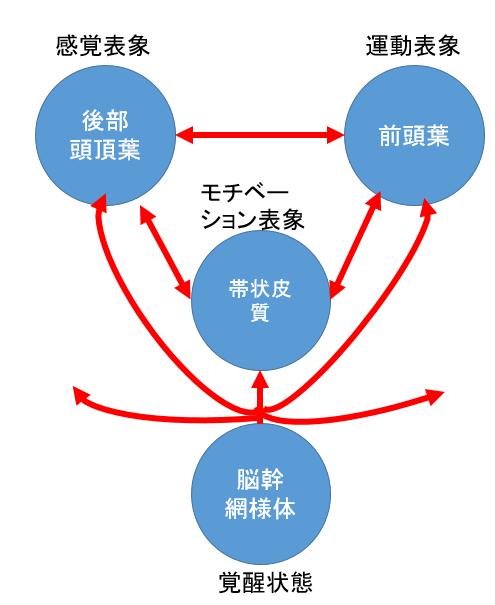 マルチネットワークの機能不全としての半側空間無視