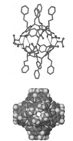 Dimeric and hexameric assemblies of resorcinarenes.