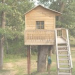 Cool Easy Treehouse Plans Free Free Treehouse Plans And Designs Simple With Easy Treehouse Plans Free Ideas House Generation