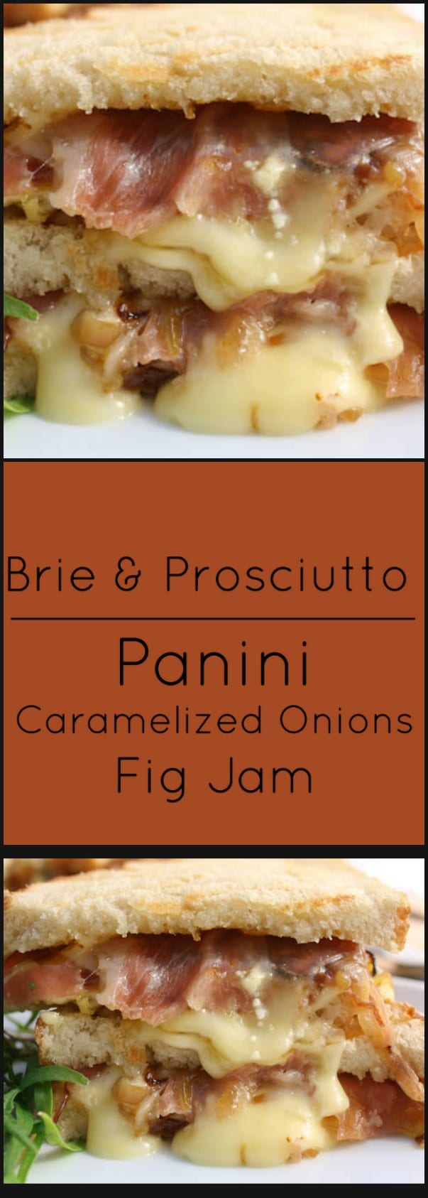 Brie and Prosciutto Panini with Caramelized Onions and Fig Jam.