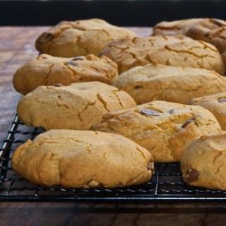 gluten free choc-chip biscuits