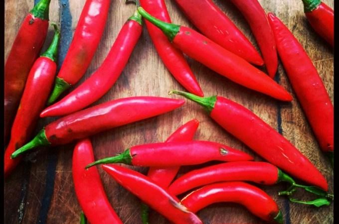sugar free sweet chilli sauce