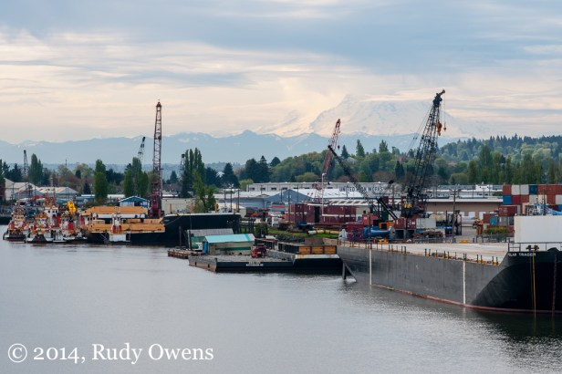 Mt. Rainier looms like a giant in the distance above the Duwamish River, in south Seattle (2014).
