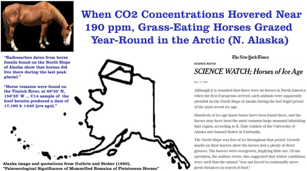 during the last ice age 190 ppm co2 horses grazed in a forested warmer than today arctic alaska - During The Last Ice Age (190 ppm CO2), Horses Grazed In A Forested, Warmer-Than-Today Arctic Alaska