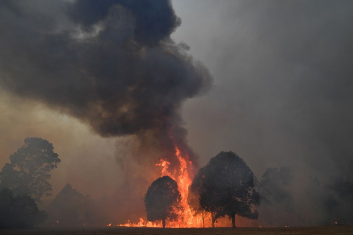 red sky flying embers australias fires are the first climate disaster of the decade 3 - Red sky, flying embers: Australia's fires are the first climate disaster of the decade