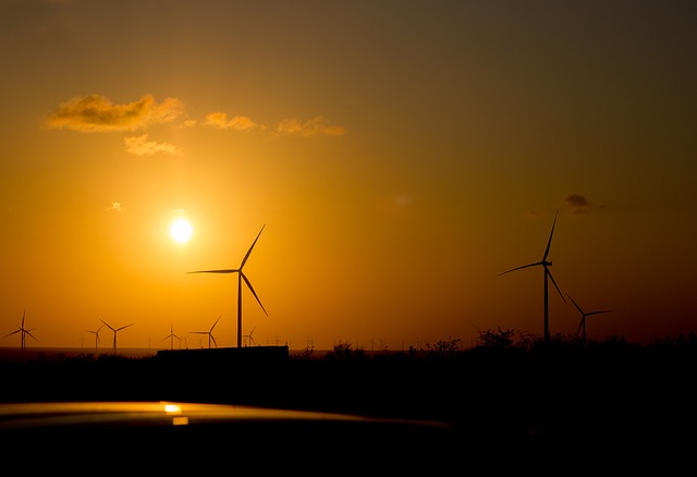 simple things you can do to use green energy - Simple things you can Do To Use Green Energy