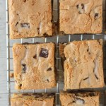 Peanut Butter Chocolate Chip Blondies
