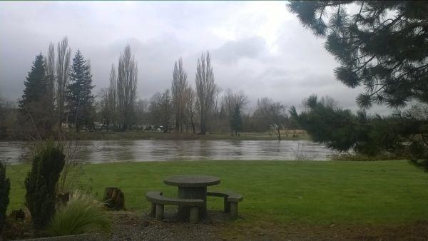 Stormy - looking at Vanderyacht Park across the Nooksack River