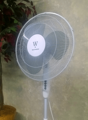 house fan stock
