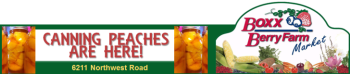 boxx berry farm canning peaches 728x