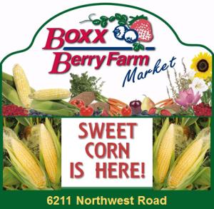 boxx berry farm sweet corn 300x