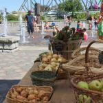 ferndale farmers market at the fountain in centennial riverwalk park 2016-08-19 discover ferndale x1024