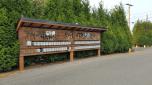 mailbox condo graffiti - pix