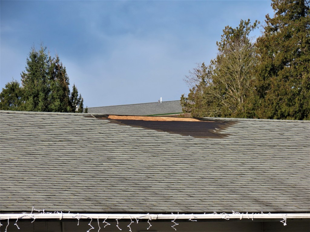 A bare patch where shingles were ripped from a roof on Westerlund Court after a windstorm with 70mph gusts (February 10, 2019). Photo: My Ferndale News