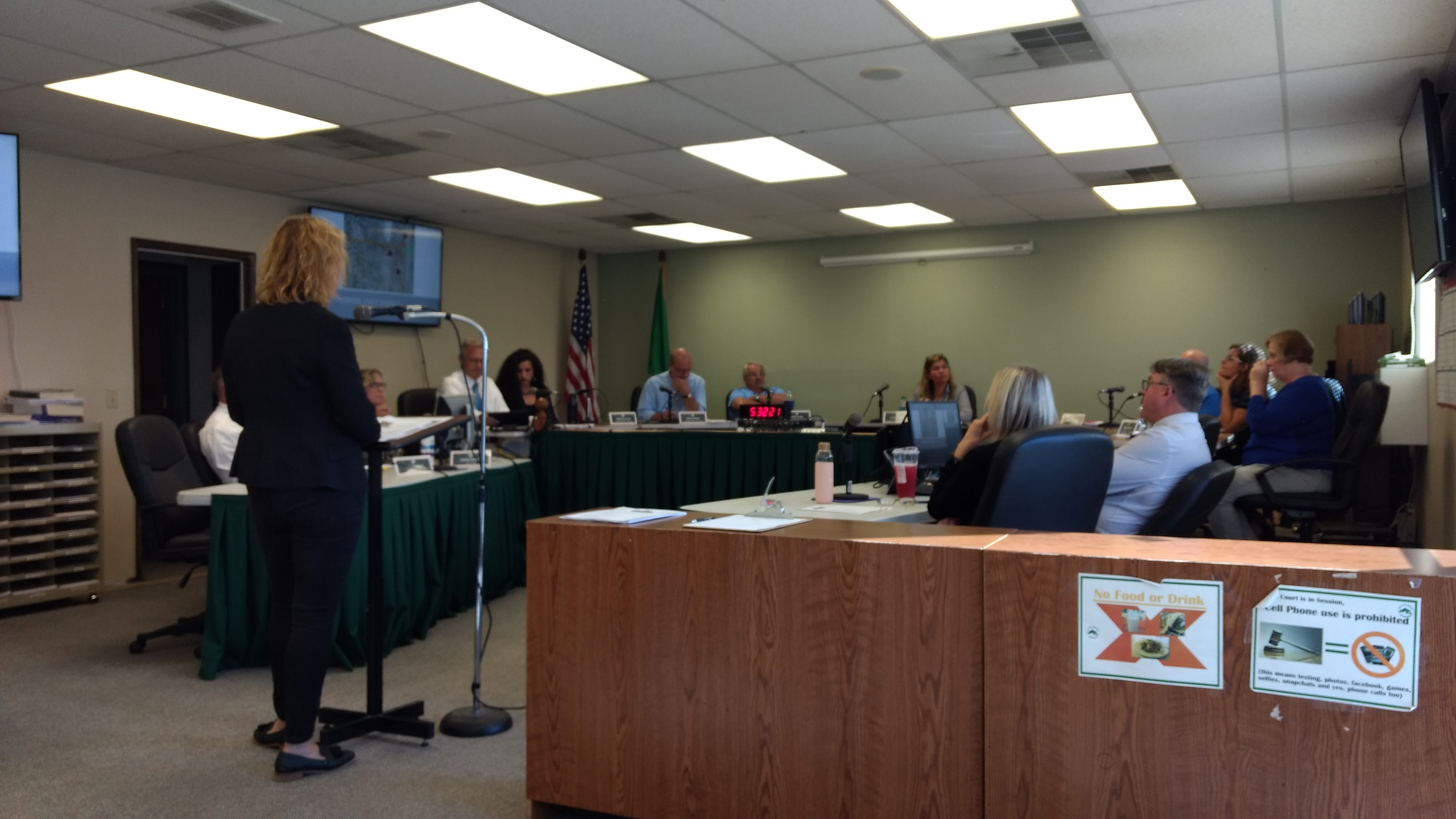 Capital Projects Manager Katy Radder speaks to the Ferndale City Council (August 19, 2019). Photo: My Ferndale News