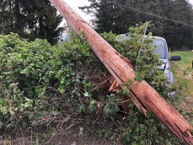 Scene of a vehicle vs pole crash on Ferndale Road (April 19, 2020). Photo: Courtesy of WCFD7