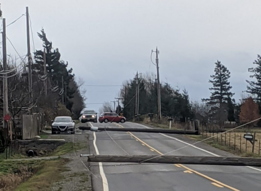 2 downed power poles lie across Mountain View Road after falling during a windstorm with gusts over 50mph (November 17, 2020). Photo courtesy of Tatiana Stone