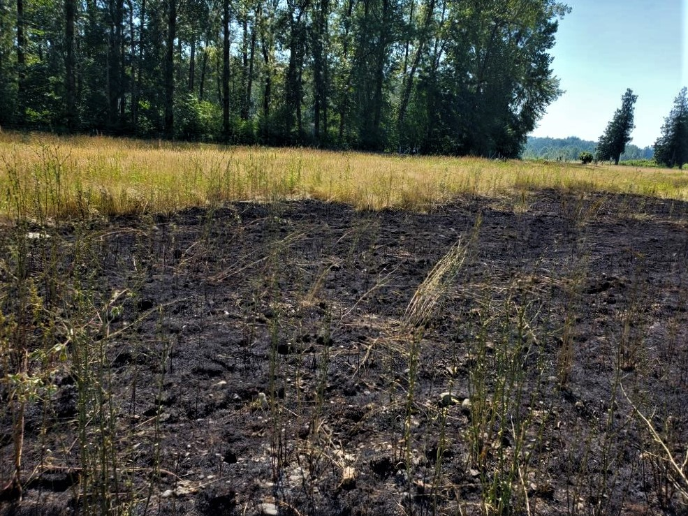 Deming Road grass fire aftermath (June 28, 2021). Photo courtesy of WCFD1