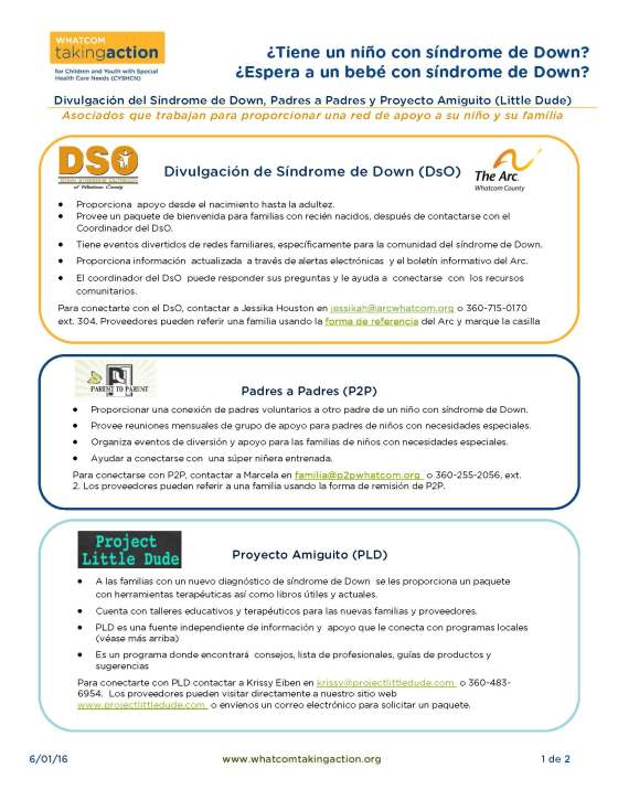 Ds Partners + flow chart (Spanish) 2016-06-01_Page_1