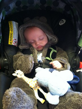 I love putting him in his bear suit. He is less amused by it.