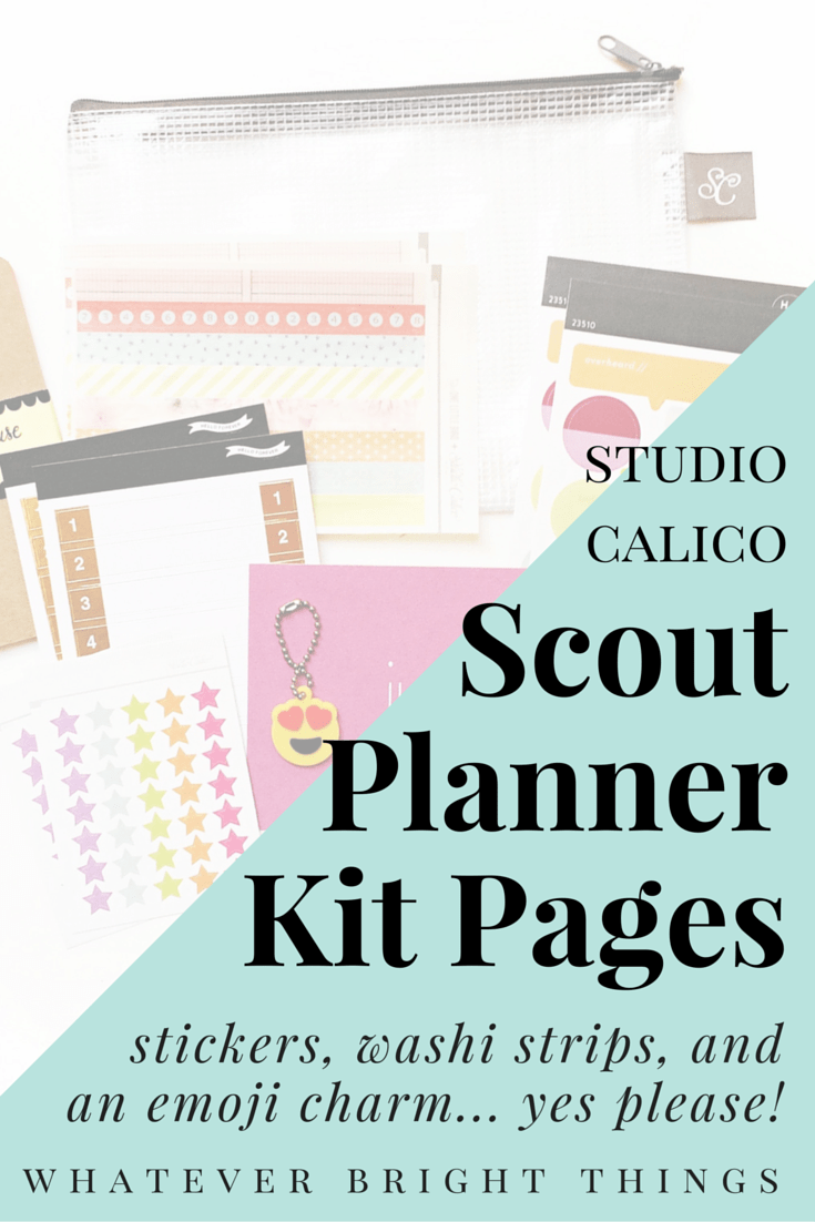 Have a Studio Calico Scout Planner Kit but not quite sure what to do with it? Check out this post where I share how I used the kit to create a bright, simple, colorful spread!