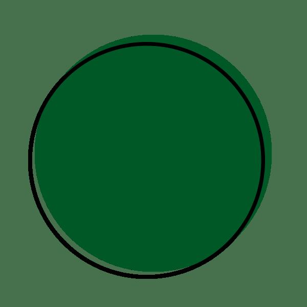 Dot Icon Evergreen