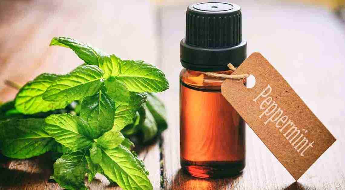 What are the Essential Oils for Pain and Inflammation