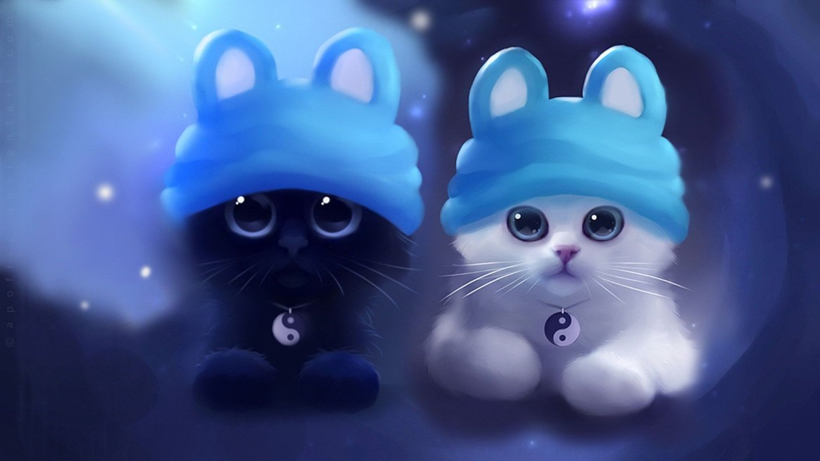 cute-black-and-white-cat-wallpaper