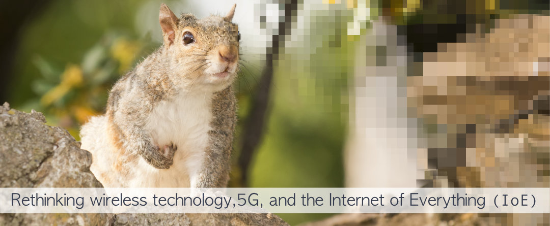 "Summary Document Of Problems With 5G and ""Small Cells"""