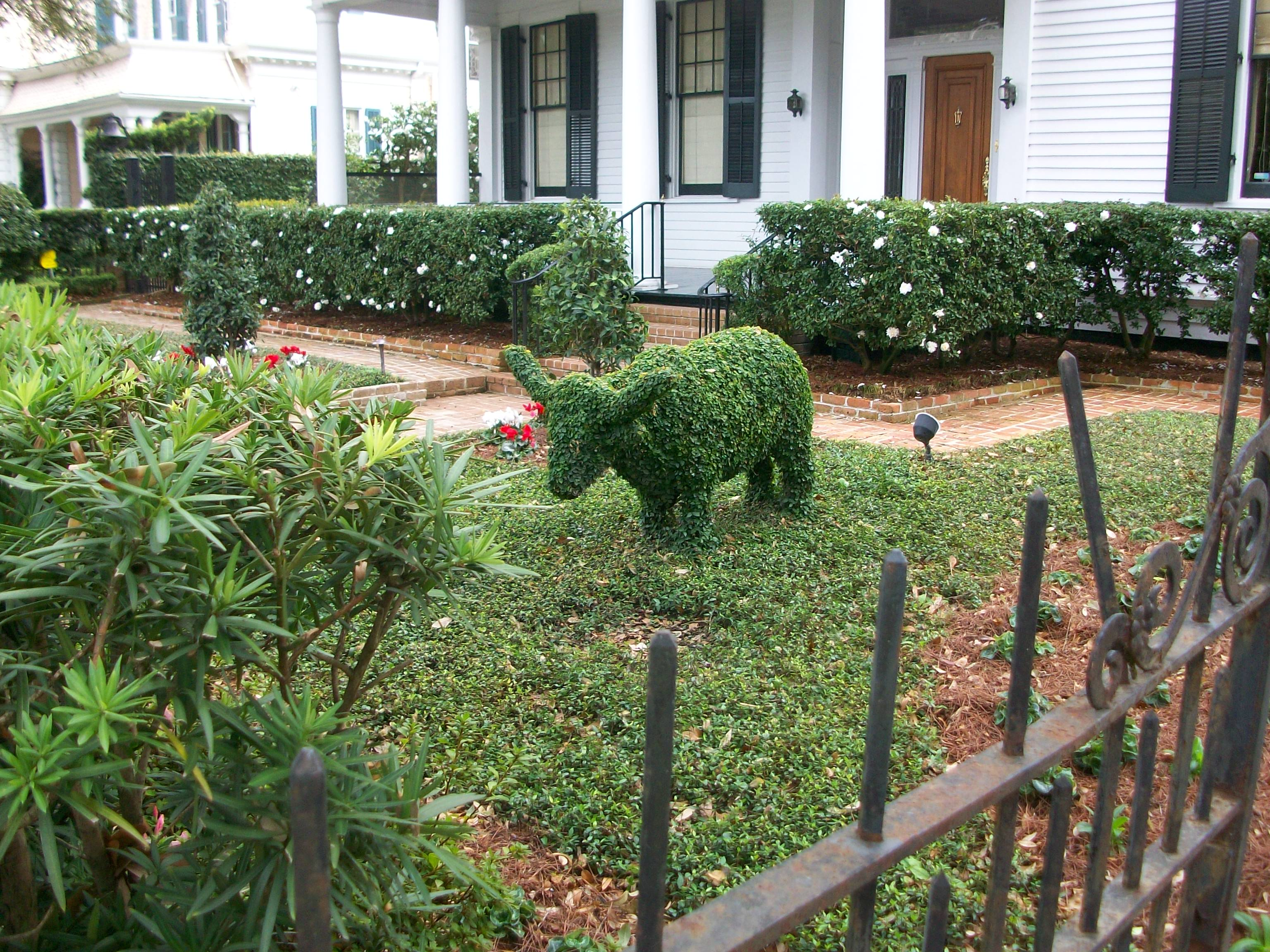 Topiary on St. Charles